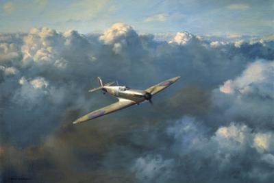 Flight of Freedom by Roy Cross