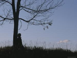 A Young Girl Leans against a Leaf-Less Tree on a Hill by Roy Gumpel