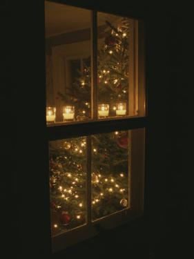 View of Candles and a Christmas Tree Through a Window by Roy Gumpel