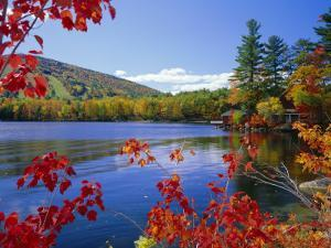 Fall Colours, Moose Pond, with Mount Pleasant in the Background, Maine, New England, USA by Roy Rainford