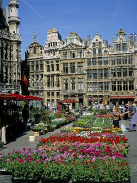 Grand Place, Brussels (Bruxelles), Belgium by Roy Rainford