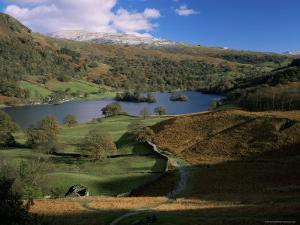 Rydal Water, Lake District National Park, Cumbria, England, United Kingdom by Roy Rainford