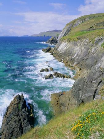 Slea Head, Dingle Peninsula, County Kerry, Munster, Republic of Ireland (Eire), Europe by Roy Rainford