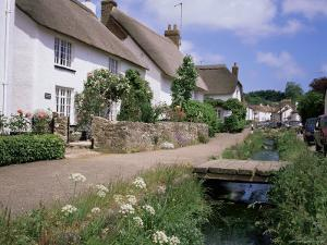 Thatched Cottages, Otterton, South Devon, England, United Kingdom by Roy Rainford