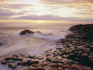 The Giant's Causeway, County Antrim, Ulster, Northern Ireland, UK, Europe by Roy Rainford