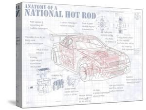 Anatomy National Hotrod by Roy Scorer