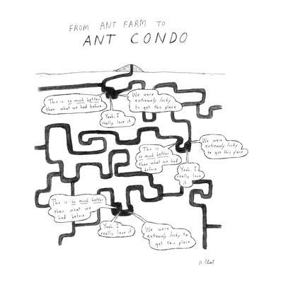 From Ant Farm to Ant Condo - New Yorker Cartoon
