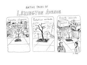 Native Trees Of Lexington Avenue - New Yorker Cartoon by Roz Chast