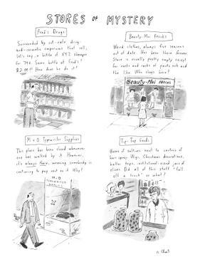 Various stores and the merchandise they sell. - New Yorker Cartoon by Roz Chast