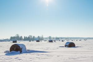 Bales of Hay Laying in the Snow by rtsubin