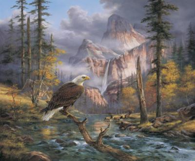 Eagles Perch
