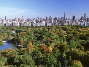 Central Park and Manhattan Buildings by Rudy Sulgan