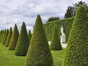 Gardens of Versailles by Rudy Sulgan