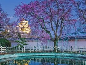 Himeji Castle Behind Blooming Cherry Trees at Twilight by Rudy Sulgan