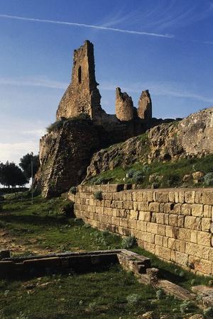 https://imgc.allpostersimages.com/img/posters/ruins-archaeological-excavations-at-velia-elea_u-L-PPA09J0.jpg?artPerspective=n
