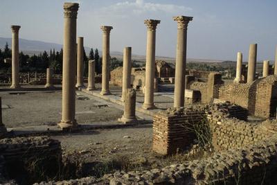 https://imgc.allpostersimages.com/img/posters/ruins-of-forum-roman-city-of-timgad_u-L-PPQAQP0.jpg?p=0