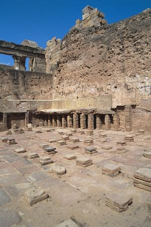 https://imgc.allpostersimages.com/img/posters/ruins-of-hadrian-baths_u-L-PP9T6G0.jpg?p=0