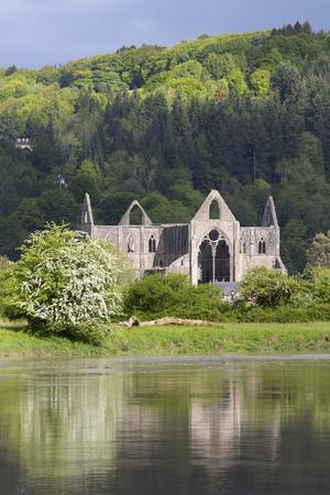 https://imgc.allpostersimages.com/img/posters/ruins-of-tintern-abbey-by-the-river-wye-tintern-wye-valley-monmouthshire-wales-united-kingdom_u-L-PWFGYF0.jpg?artPerspective=n