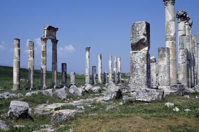 https://imgc.allpostersimages.com/img/posters/ruins-with-roman-columns-of-apamea-syria-3rd-century_u-L-PP6P3K0.jpg?p=0