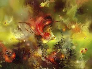 Fish 8 by RUNA