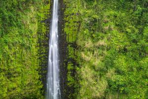 Akaka Falls, Akaka Falls State Park, Hamakua Coast, Big Island, Hawaii, USA by Russ Bishop