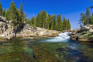 Cascade on the Tuolumne River, Tuolumne Meadows, Yosemite National Park, California, USA. by Russ Bishop
