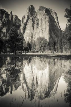Cathedral Rocks reflected in pond, Yosemite National Park, California by Russ Bishop