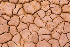 Cracked mud patterns on the playa, Clark Dry Lake, Anza-Borrego Desert State Park, California by Russ Bishop