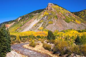 Fall color along Mineral Creek under Red Mountain Pass, San Juan National Forest, Colorado, USA by Russ Bishop