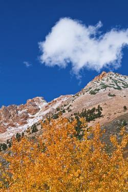 Fall color and early snow above North Lake, Inyo NF, Sierra Nevada Mountains, California by Russ Bishop
