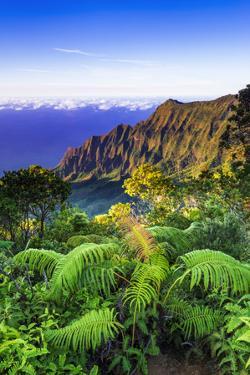 Kalalau Valley and the Na Pali Coast from the Pihea Trail, Kokee State Park, Kauai, Hawaii, USA by Russ Bishop