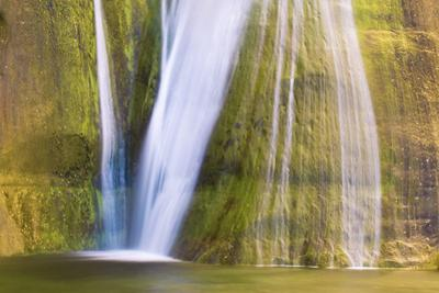 Lower Calf Creek Falls, Grand Staircase-Escalante National Monument, Utah, USA by Russ Bishop