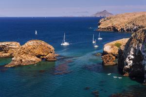 Sailboats at Scorpion Cove, Santa Cruz Island, Channel Islands National Park, California by Russ Bishop