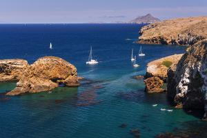 Sailboats at Scorpion Cove, Santa Cruz Island, Channel Islands National Park, California by Russ Bishop