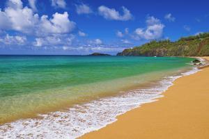 Surf, sand and blue green waters at Secret Beach, Kilauea Lighthouse visible, Kauai, Hawaii by Russ Bishop