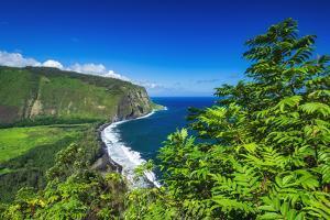 Waipio Valley, Hamakua Coast, Big Island, Hawaii, USA by Russ Bishop