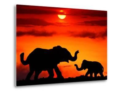 Adult and Young Elephants, Sunset Light