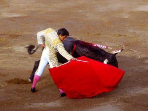Matador at Monumental El Paso, Bullfight (Fiesta Brava), San Luis Potosi, Mexico by Russell Gordon