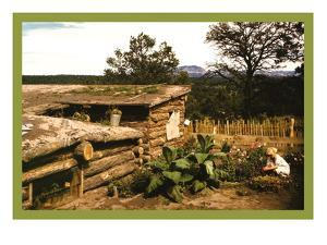 Dugout Home Graden of Jack Whinery in Pie Town by Russell Lee