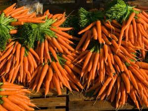 Carrots, Metkovic, Dalmatia, Croatia by Russell Young