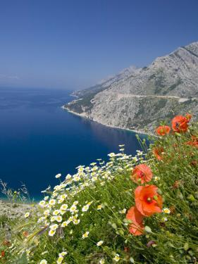 Dalmatian Coast, Croatia by Russell Young