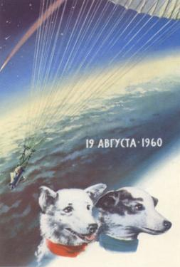 Russian Space Dogs
