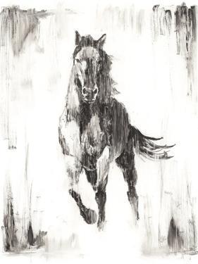 Rustic Black Stallion II