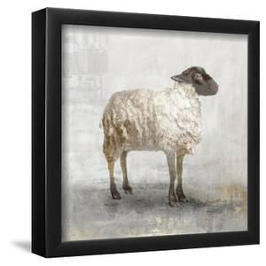Rustic White Sheep 10 x 10 Framed Canvas