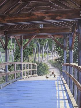 Bridge by Rusty Frentner