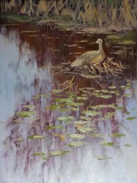 Crane by Rusty Frentner