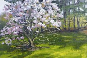 Magnolia by Rusty Frentner