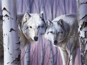 White Wolves by Birch by Rusty Frentner