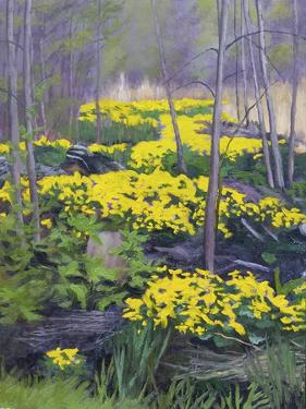 Yellow Flowers by Rusty Frentner