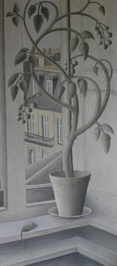 Plant in Window, by Ruth Addinall